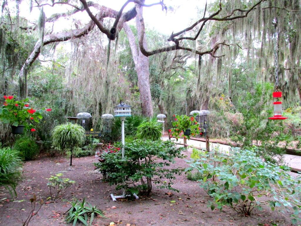 Jekyll Island Campground