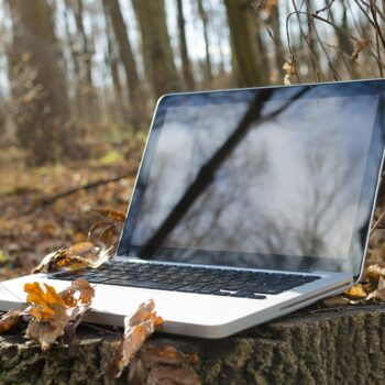 Laptop in woods