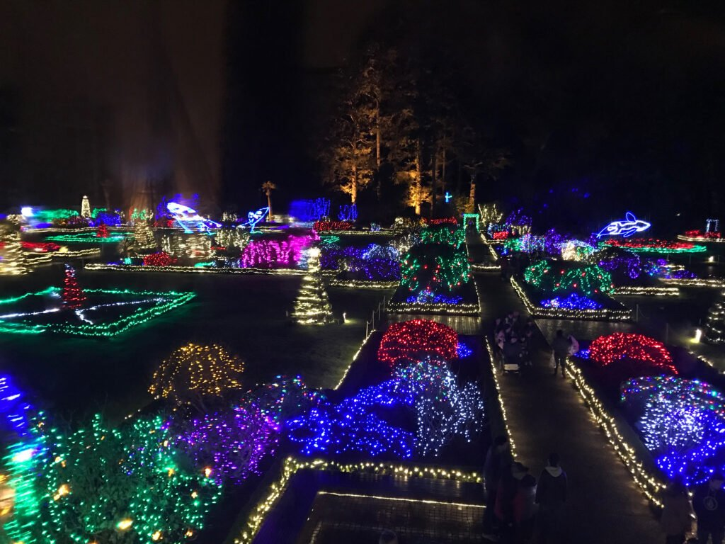 Christmas light display at Shore Acres State Park