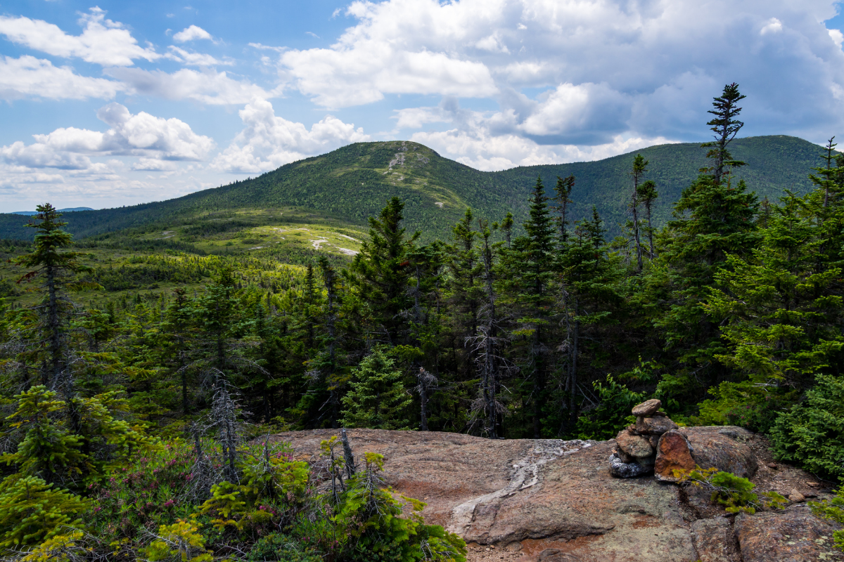 landscape in Maine