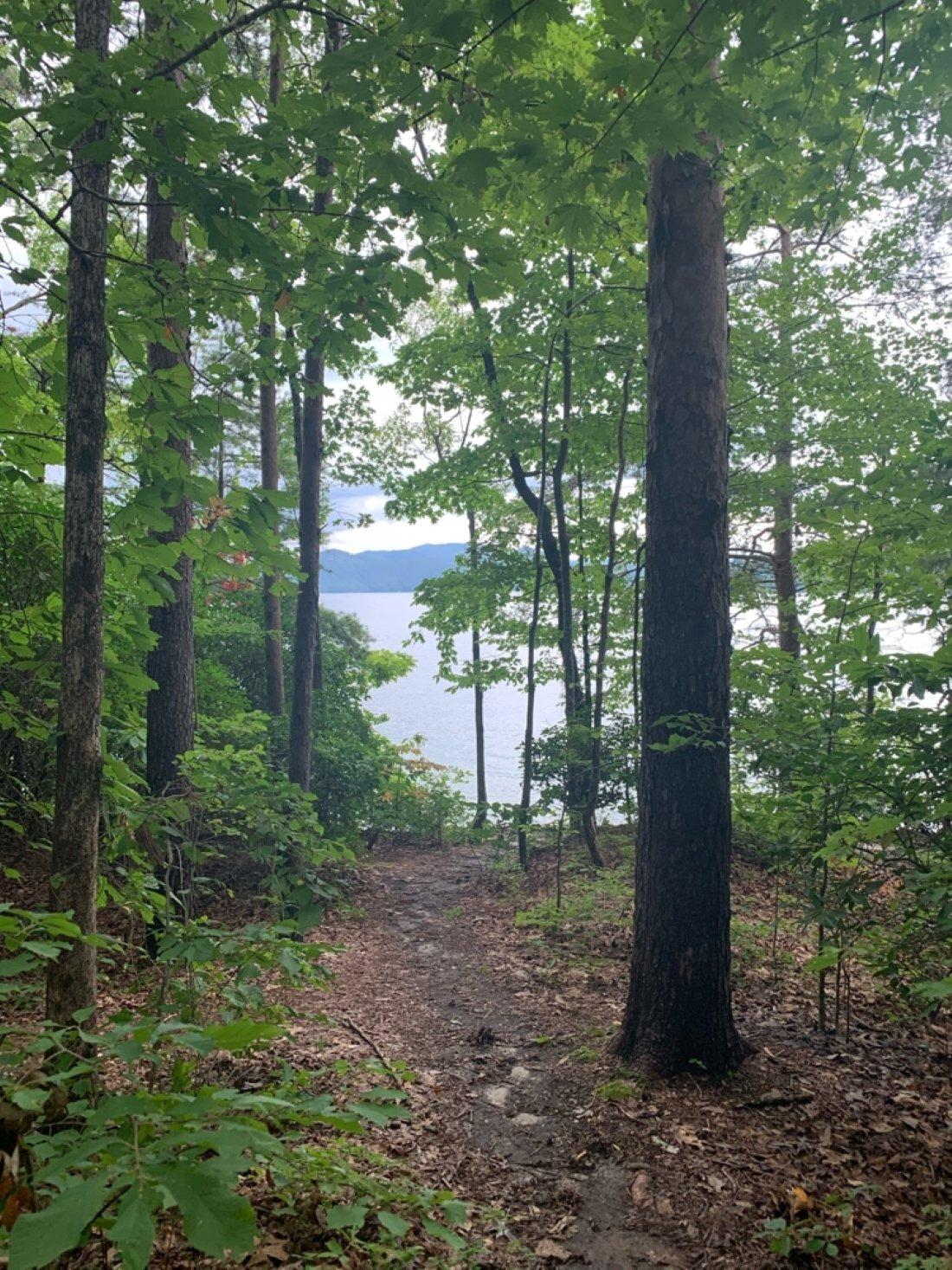 walking path at a South Carolina RV campground