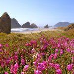 scenic RV destination - the Oregon Coast