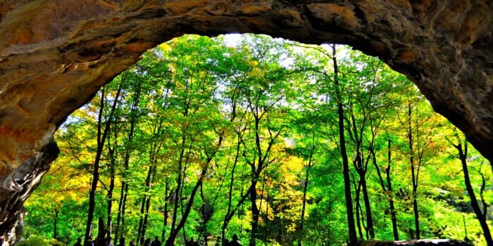 view at Starved Rock State Park