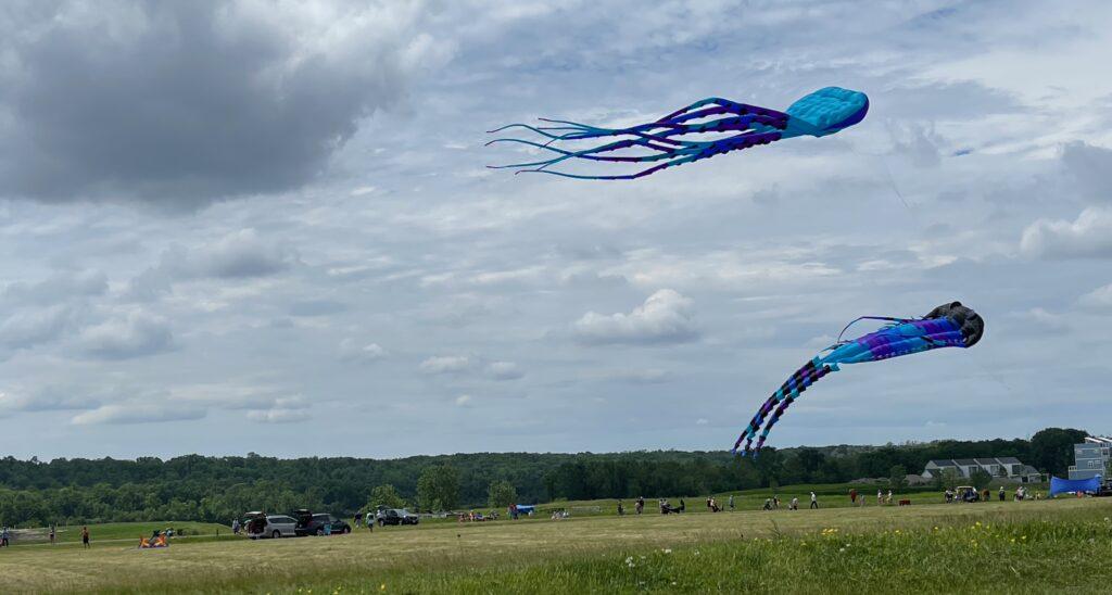 Kites flying at a kite festival while RV camping near Ottawa