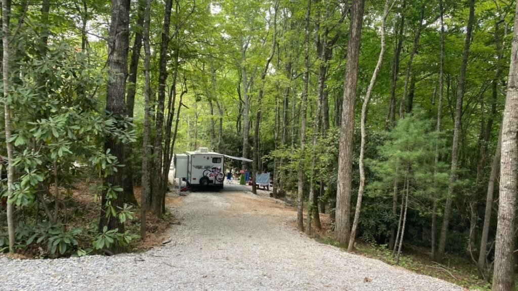 Bear Den Campground view of wooded site