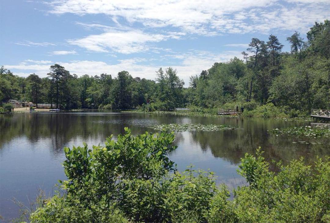 Freshwater lake in trees at Timberland Lake Campground - water parks
