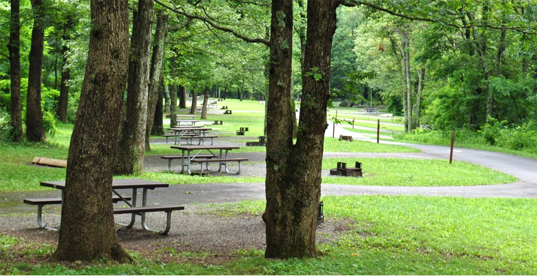 Mathews Arm Campground campsites - one of the best national park campgrounds