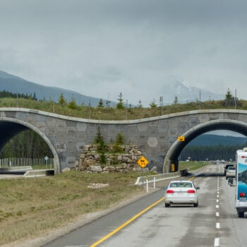 RV driving under overpass - low clearance accidents