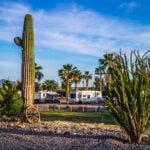 Yuma, Arizona RV park - a great place for winter escapes